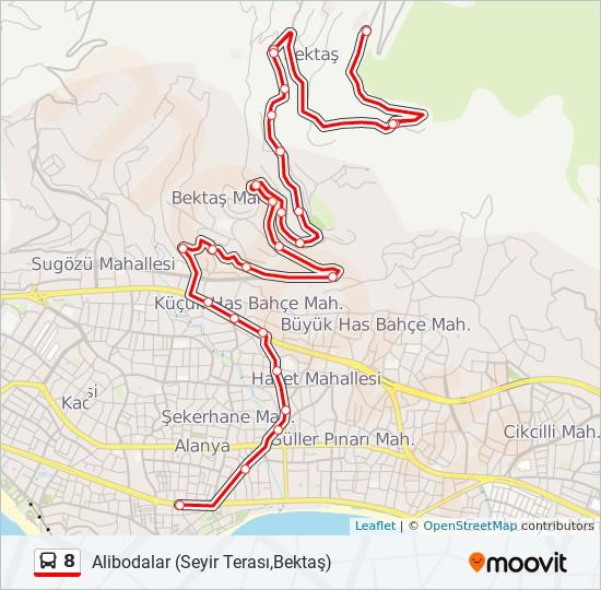 8 otobüs Hat Haritası