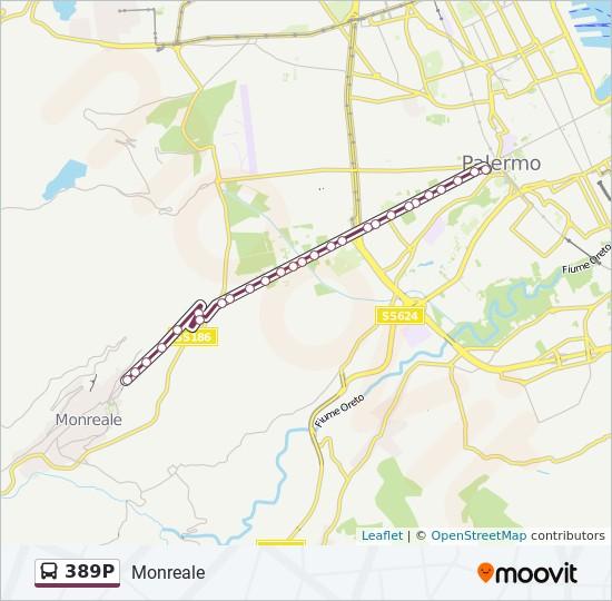 Mapa de 389P de autobús