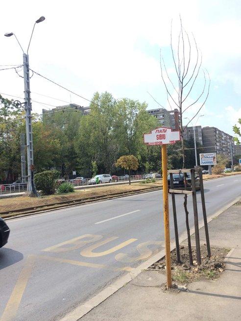 Stația Sibiu