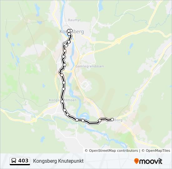kongsberg knutepunkt kart 403 Rutetidtabeller, Stopp & Kart kongsberg knutepunkt kart