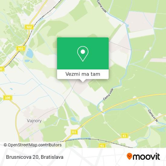 Brusnicova 20 mapa