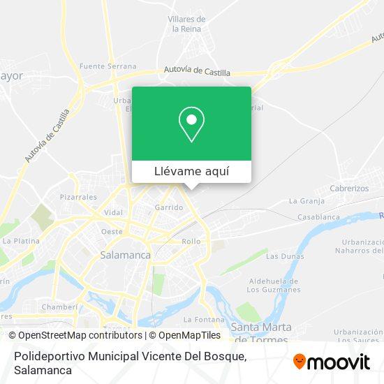 Como Llegar A Polideportivo Municipal Vicente Del Bosque En Salamanca En Autobus Moovit