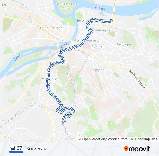 knezevac beograd mapa Línea 37: horarios, mapas y paradas knezevac beograd mapa