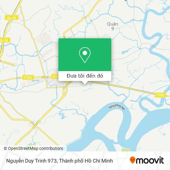 Bản đồ Nguyễn Duy Trinh 973