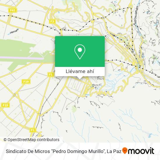"Mapa de Sindicato De Micros ""Pedro Domingo Murillo"""