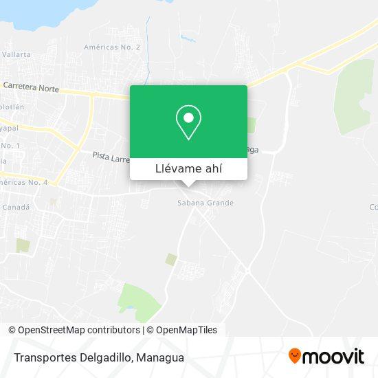 Mapa de Transportes Delgadillo