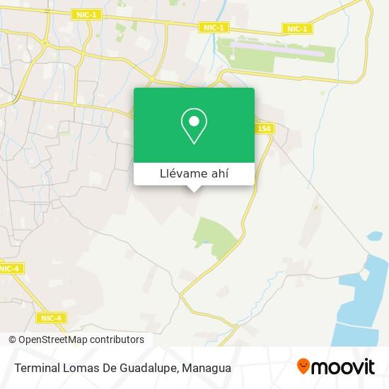 Mapa de Terminal Lomas De Guadalupe