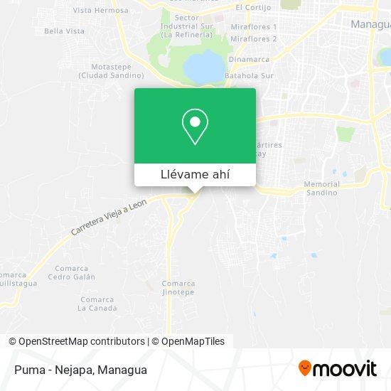 Mapa de Puma - Nejapa