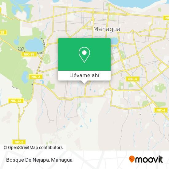 Mapa de Bosque De Nejapa