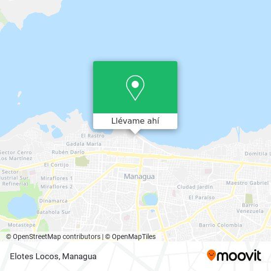 Mapa de Elotes Locos