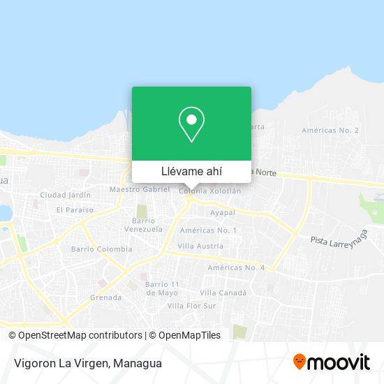 Mapa de Vigoron La Virgen