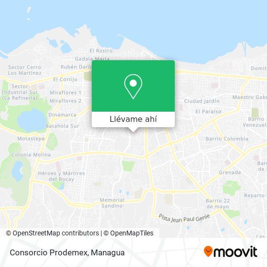 Mapa de Consorcio Prodemex