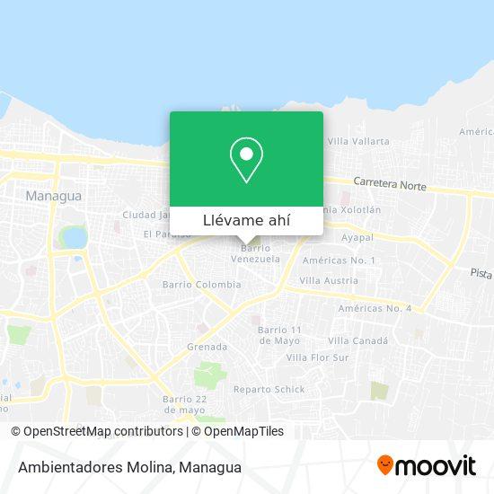 Mapa de Ambientadores Molina