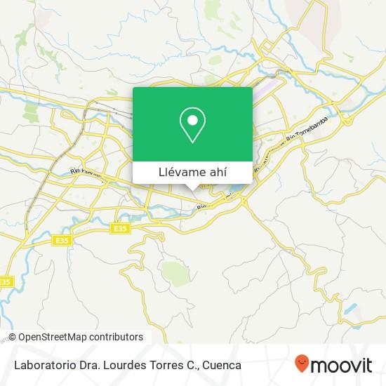 Mapa de Laboratorio Dra. Lourdes Torres C.