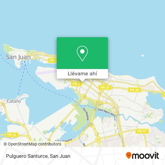 Mapa de Pulguero Santurce