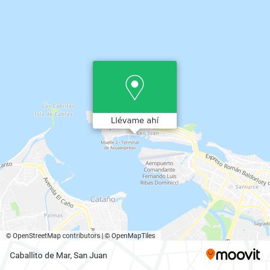 Mapa de Caballito de Mar