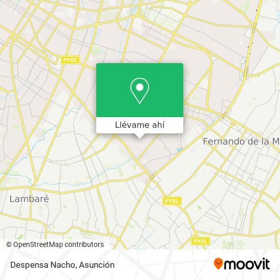 Mapa de Despensa Nacho