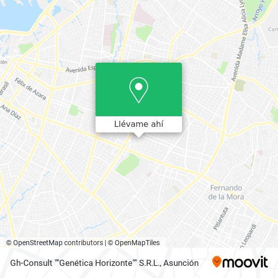 "Mapa de Gh-Consult """"Genética Horizonte"""" S.R.L."