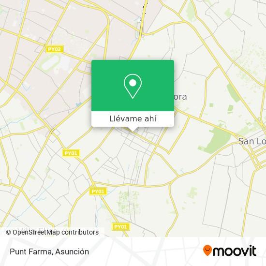 Mapa de Punt Farma