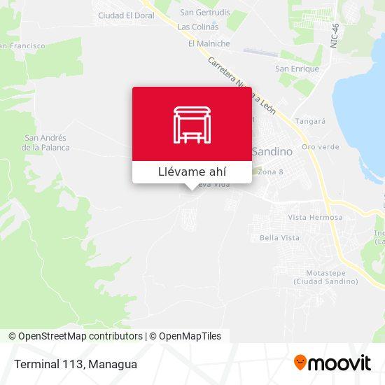 Mapa de Terminal 113