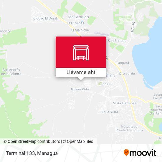 Mapa de Terminal 133
