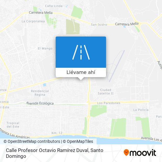 Mapa de Calle Profesor Octavio Ramírez Duval