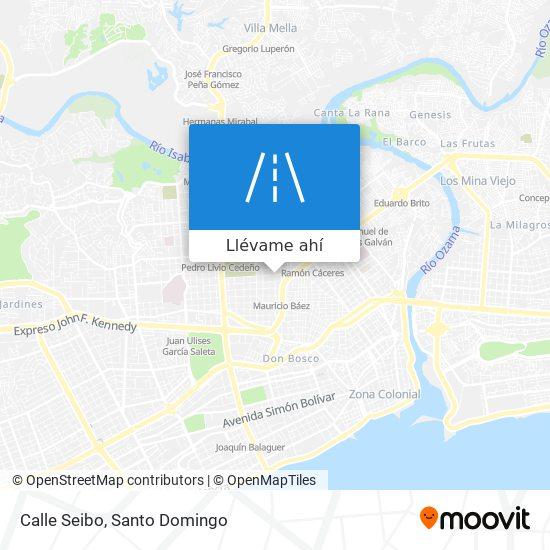 Mapa de Calle Seibo