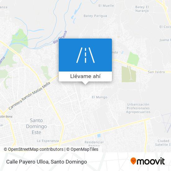 Mapa de Calle Payero Ulloa