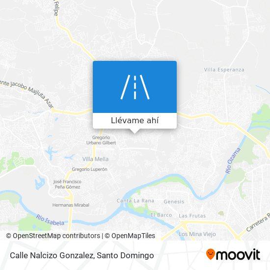 Mapa de Calle Nalcizo Gonzalez