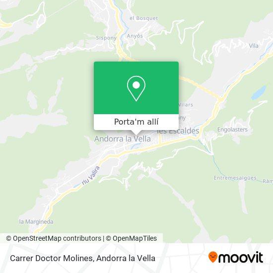 mapa Carrer Doctor Molines