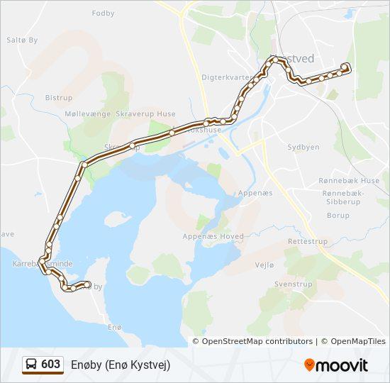 603 bus Linjekort