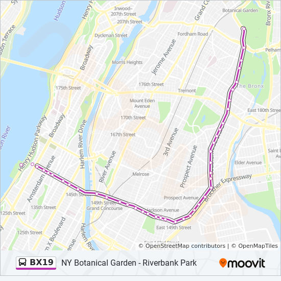 BX19 Route: Time Schedules, Stops & Maps - Bronx Park Via ... on q33 bus route, q11 bus route, q3 bus route, q28 bus route, q25 bus route, q44 bus route, q83 bus route, q22 bus route, q30 bus route, q53 bus route, q12 bus route, q65 bus route, q55 bus route, q58 bus route, q17 bus route, q36 bus route, q34 bus route, q43 bus route,