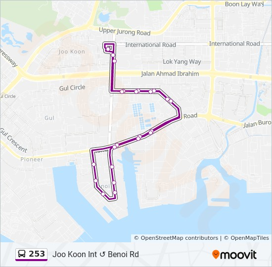 253 Route: Time Schedules, Stops & Maps - Joo Koon Int