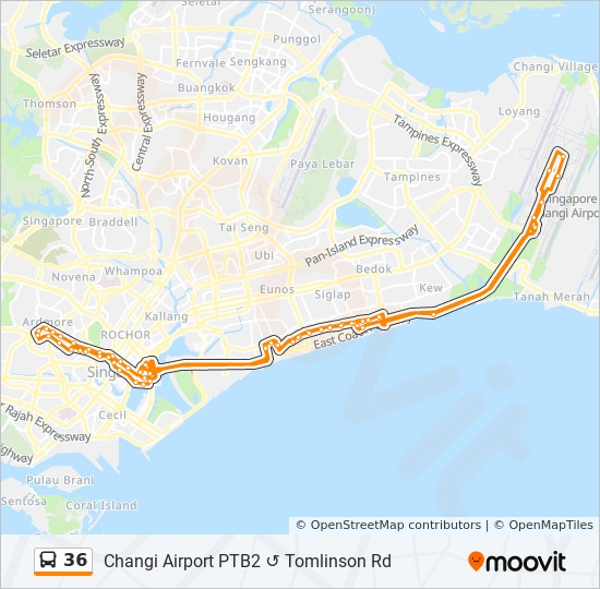 36 Route: Time Schedules, Stops & Maps - Changi Airport Ptb2