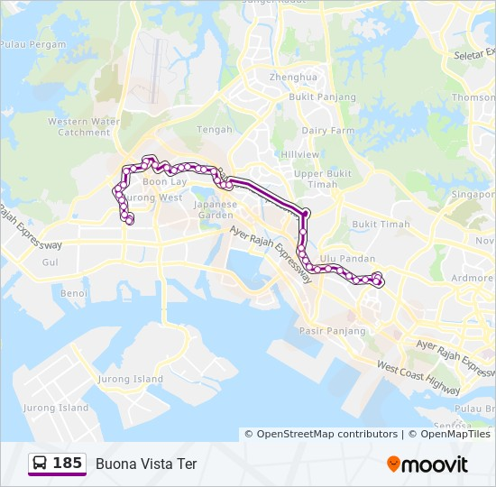 185 Route: Time Schedules, Stops & Maps - Buona Vista Ter
