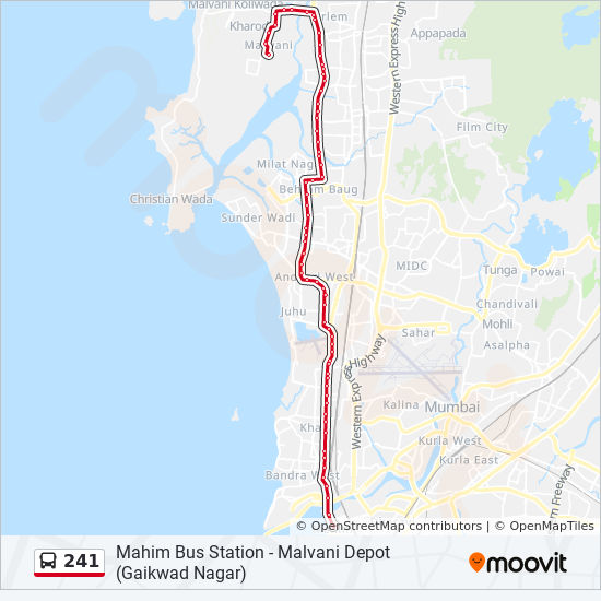 241 Route: Time Schedules, Stops & Maps
