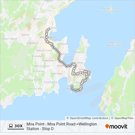 30X Route: Schedules, Stops & Maps - Wellington Station ...