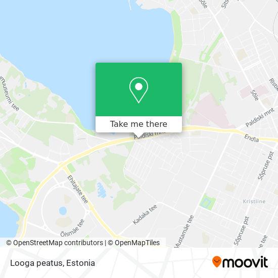 Looga peatus map