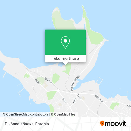 Рыблка-ебалка map
