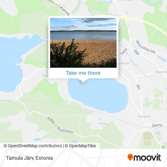 Tamula Järv map