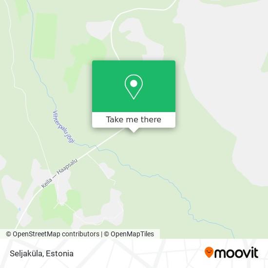 Seljaküla map