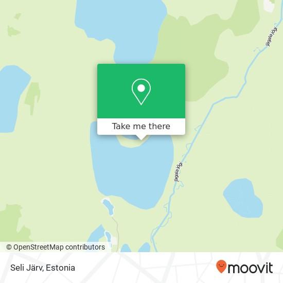 Карта Seli Järv