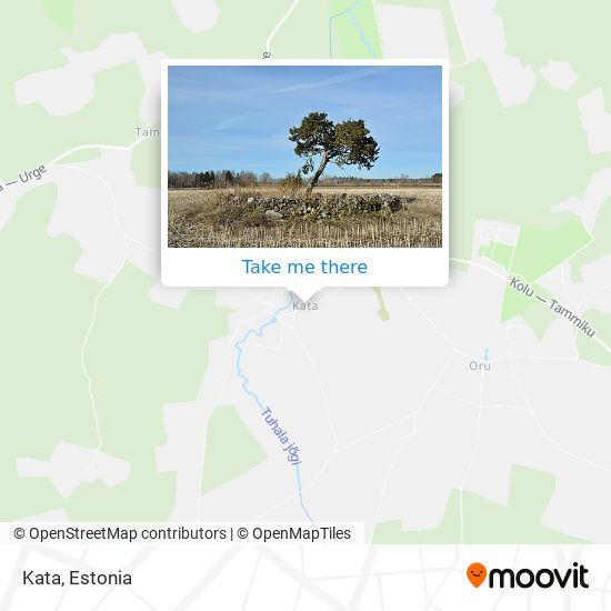 Kata map
