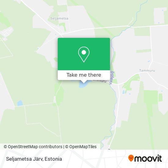 Seljametsa Järv map
