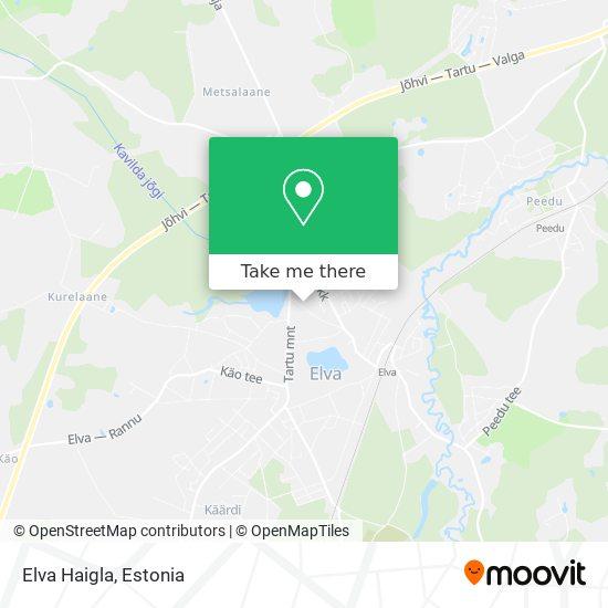 Elva Haigla map