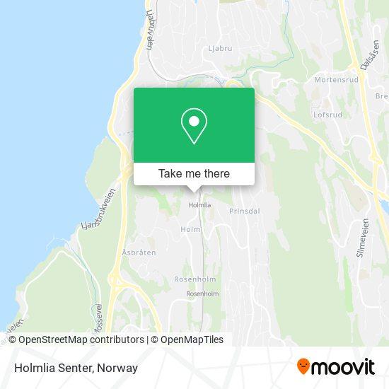 Holmlia Senter map