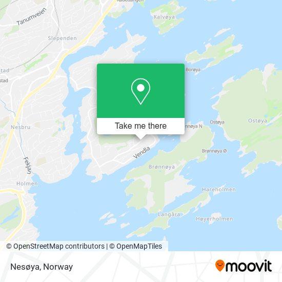 Nesøya map
