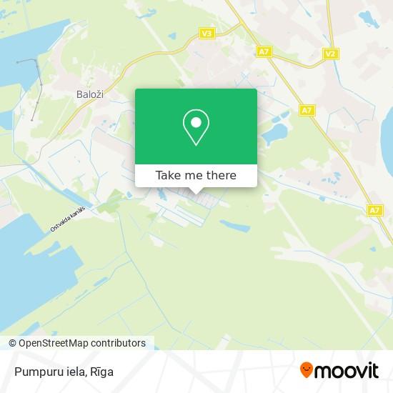 Pumpuru iela map
