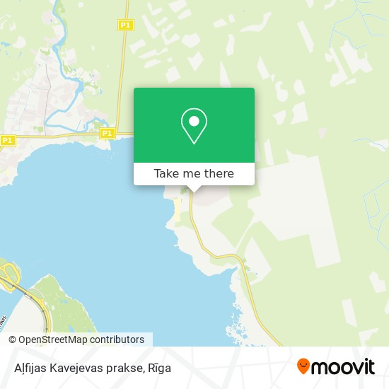 Aļfijas Kavejevas prakse map