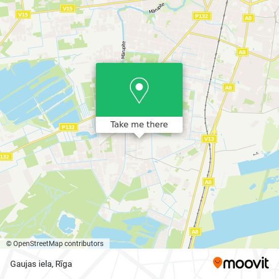 Gaujas iela map